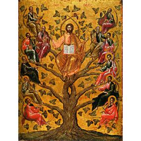 <b>3 января 2016 года</b> &#8212; Неделя 31-я по Пятидесятнице, перед Рождеством Христовым, святых отец.