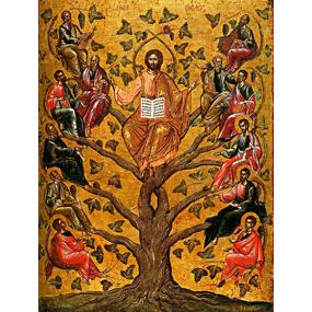 Неделя пред Рождеством Христовым, святых отец