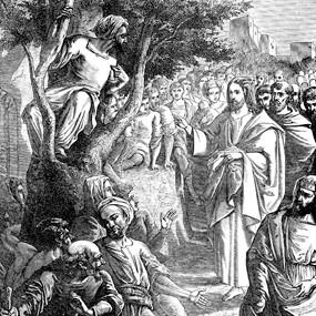 <b>29 января 2017 года</b> &#8212; Неделя 32-я по Пятидесятнице, о Закхее