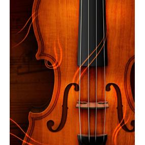 13 августа 2017 года &#8212; <b>Концерт классической музыки</b>