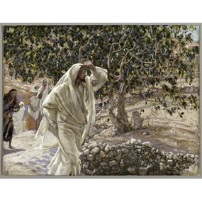 Притча Христова о винограднике