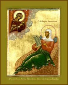 Блаженная Матрона Анемнясевская (Белякова), Христа ради юродивая