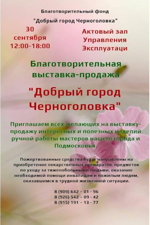 Благотворительная выставка-продажа «Добрый город Черноголовка»