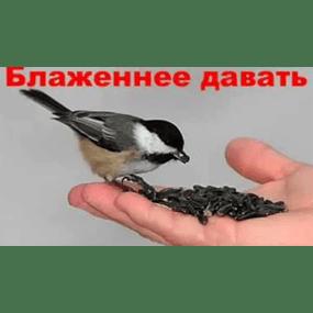 Блаженнее давать