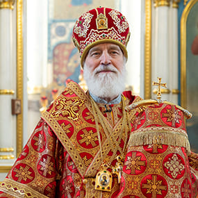 Павел, митрополит Крутицкий и Коломенский, Патриарший наместник Московской митрополии